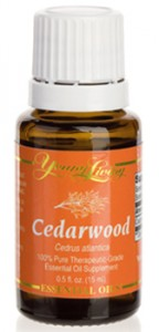 cedarwood essential oil by Young Living Essential Oils