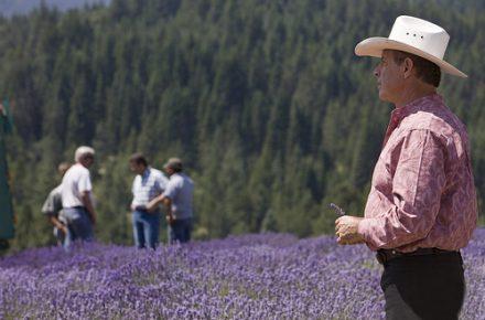 Gary Young at lavender farm in St. Maries, Idaho
