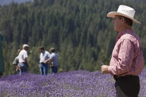 Gary Young at lavender farm in St. Maries, ID