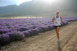 woman running at Run Through the Lavender 5k Race in Mona, UT