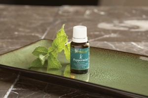 peppermint essential oil by Young Living Essential Oils