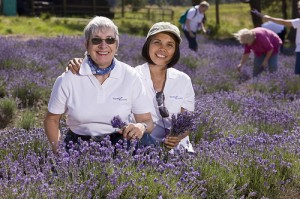 Young Living Essential Oil distributors at lavender farm