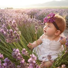 baby girl in lavender field