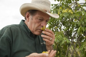 Gary Young smelling Ylang Ylang flower