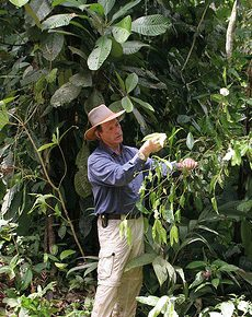 Gary Young in the Amazon