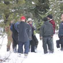 Gary Young and others during the balsam fir tree harvest