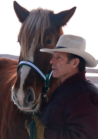 Gary Young with horse at Balsam harvest