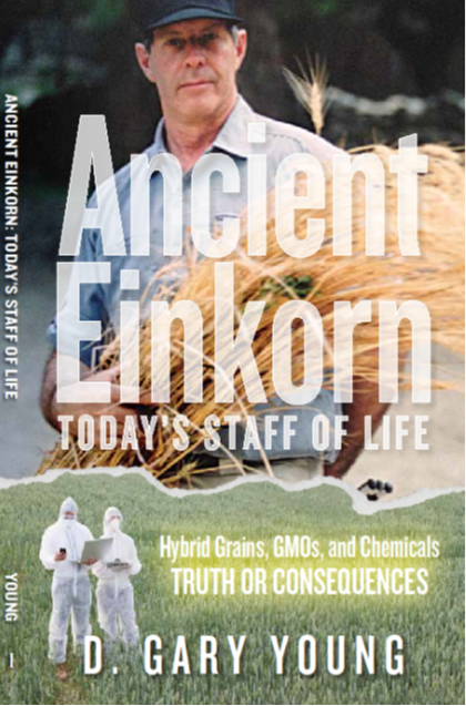 Gary's book tells of his worldwide search to find a healthy grain like the wheat of his youth. He now has einkorn grain growing on three of his Young Living farms.