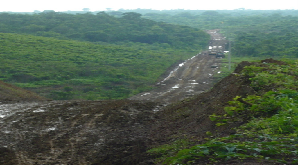 This is part of the 2-mile road Gary built into the Young Living Farm in Ecuador.