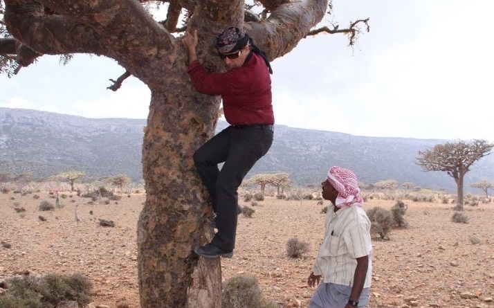 Gary after checking out a Boswellia elongata tree on the Homhill Plateau of Socotra Island, 2009.