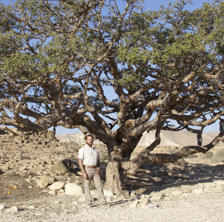 Gary in Oman with Sacred Frankincense Tree